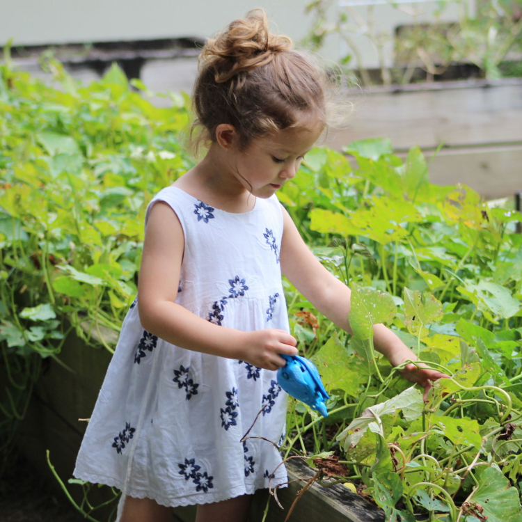 fun outdoor activity with your child